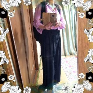 【着画】【ファッション】~20年8月14日のコーディネート  プチプラ プチプラコーディネート 大人かわいい 主婦ブログ