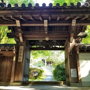 【京都】泉涌寺塔頭『来迎院』に行ってきました。 京都観光 京都旅行 女子旅 主婦ブログ