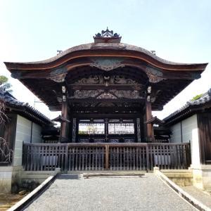 【京都】【御朱印】『仁和寺』に行ってきました。 京都旅行 京の冬の旅 京都観光 女子旅 主婦ブログ