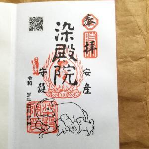 【京都】【御朱印】『染殿院』『八坂神社』の御朱印をいただきました。 京都観光 京都旅行 女子旅 主婦ブログ
