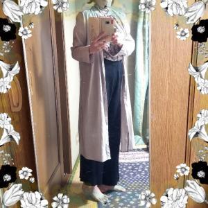 【着画】【コーディネート】~21年5月25日のコーディネート  プチプラ プチプラコーデ  主婦ブログ