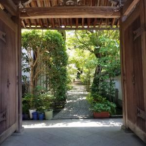 【京都】『浄土院』に行ってきました。 京都観光 大人女子旅 一人旅 主婦ブログ