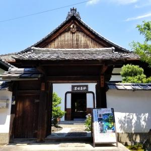 【京都】【御朱印】建仁寺塔頭『霊源院』に行ってきました。 京都観光 女子旅 大人旅 主婦ブログ