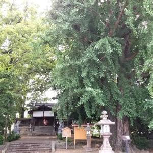 【京都】『三栖神社』に行ってきました。京都観光 女子旅 主婦ブログ 猫