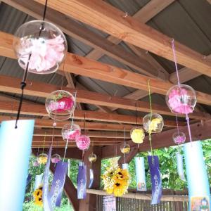 【大阪】【御朱印】『水無瀬神宮』に行ってきました。 風鈴 夏の風物詩  女子旅 主婦ブログ