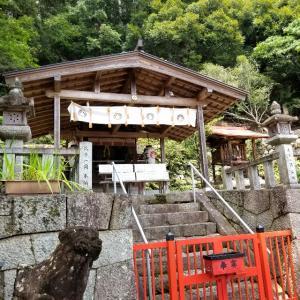 【京都】松ヶ崎、『新宮神社』に行ってきました。 京都観光 女子旅 一人旅 主婦ブログ