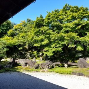 【京都】【御朱印】八坂、『圓徳院』に行ってきました。 京都観光 女子旅 社寺めぐり