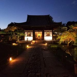 【京都】【御朱印】八坂、『高台寺』、ライトアップに行ってきました。 京都旅行 京都観光 女子旅