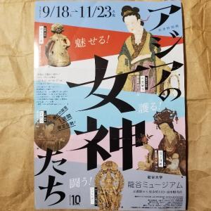 【京都】『龍谷ミュージアム』、「アジアの女神たち」展に行ってきました。 京都観光 そうだ京都行こう