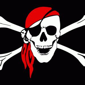海賊版DVDの特徴と見分け方!【誤って購入しないよう注意する】