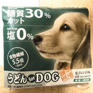 【写真記事】初めてうどんを食べたうちの犬【讃岐うどん】