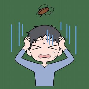 ゴキブリに入居許可した覚えなし、意外な侵入経路対策
