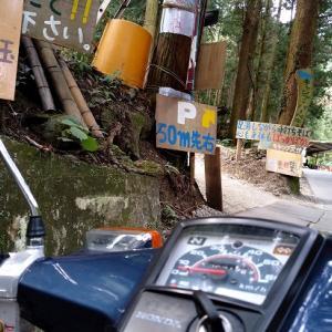 1995年式 スーパーカブ を借りて行く和泉葛城山