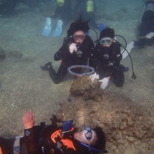 ドキッ!沖縄の海で初体験!