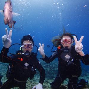 インしてみる?沖縄の海にダイブイン!