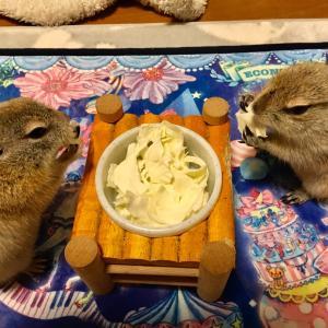 平和な夕食