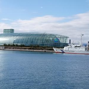 【XC40で行く】福島・宮城・奥入瀬周遊(2020年11月24日~11月27日)その⑥