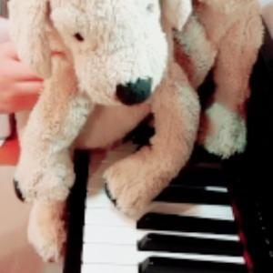 始めてのオンラインピアノレッスン