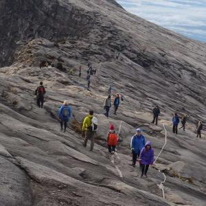 【東南アジア最高峰に登る①】キナバル山1泊2日現地ツアー予約方法
