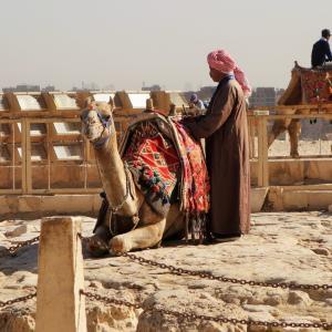 【金を払うまでついてくる】エジプトで出会うしつこい客引き体験談7選