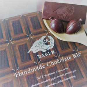 【原料お取り寄せ】コロナ禍でも!自宅で作る高カカオ豆から濃厚チョコレート