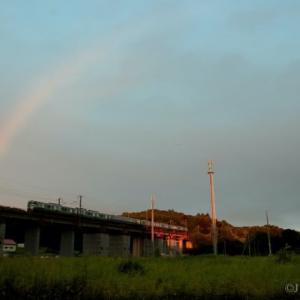 虹が出ていたので