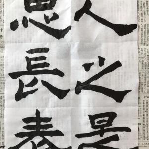 """なぜヒトは""""難産""""を選んだのか?(NHK BS番組より)"""