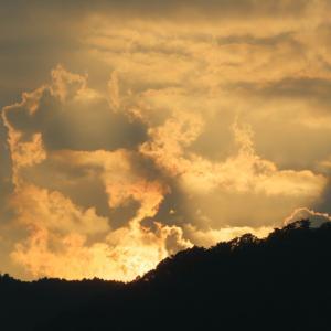 夏の空と鳥たち6(日没後の影と雲)