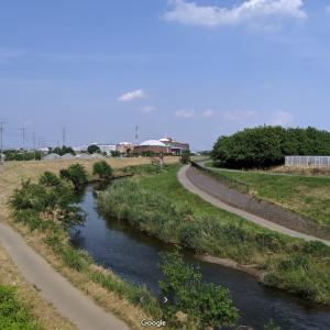 奥様と川辺を散歩……日本犬に沢山会いました、挨拶してくれているのかなー?