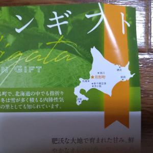 ふるさと納税メロン熟成中……「北海道樺戸郡月形町」です