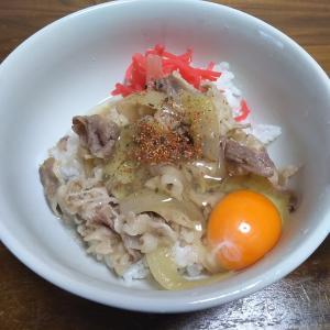 牛丼・牛皿を使った食卓風景……こう見ると随分といろいろ食べているなー