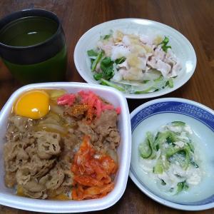 久しぶりに「吉野家」のテイクアウト……これなら穏やかに美味しく食べられるようです