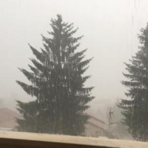 雹(ヒョウ)害 sinistre grêle