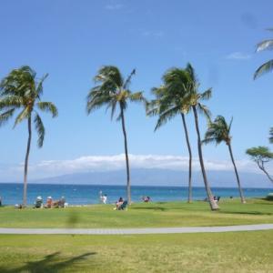 【実録】ハワイ島移住に憧れるマハロ家のコナおすすめビーチ5選