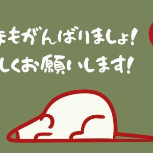 【謹賀新年】令和2年一発目のFXデイトレはAUDCAD…!!