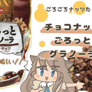 ごろっとグラノーラの美味しさを伝えたい!チョコナッツが最強におすすめ
