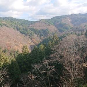 二か月で3度目の吉野山・・・・・・・。