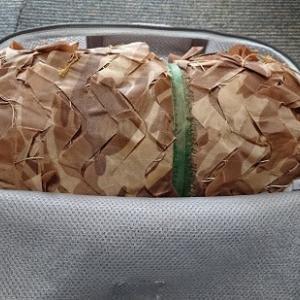 テントの開梱とギリーネットの収納方法