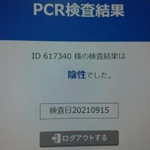 PCR検査の結果・・・・・・・・。('◇')ゞ