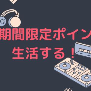 楽天期間限定ポイント○○万円分を生活費として使う方法を再考察してみた!
