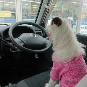 僕が運転します