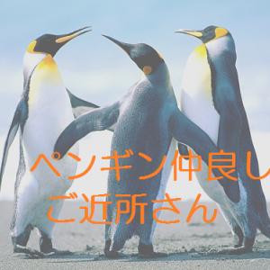 ネットワークが鍵!ペンギンモバイル、フランチャイズ300店舗ニュースから思うこと。