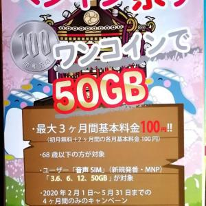 速報 お得なキャンペーン おすすめ 格安シム 50ギガもワンコイン!! ペンギン祭り  2月1日から5月31日まで!