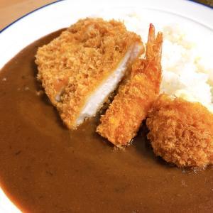 【グルメ】今日は月曜断食の美食日!プロクオリティーカレーに豚カツをのせてやる!