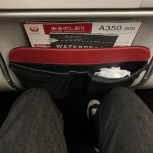 【搭乗記】JAL517便 羽田ー新千歳 A350-900のエコノミーシートを利用しました