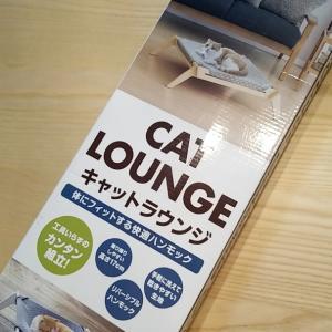 猫ベッドを交換!洗いやすく、寝やすい...