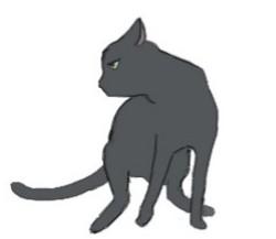 猫のう○こに毎日呼ばれます…