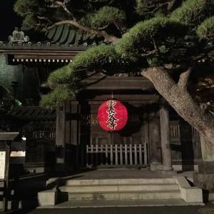 四萬六阡日大功徳日に「鎌倉長谷寺の観音菩薩様」に会いにいかれてください。風雷龍のパワースポット探訪