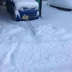 朝から除雪