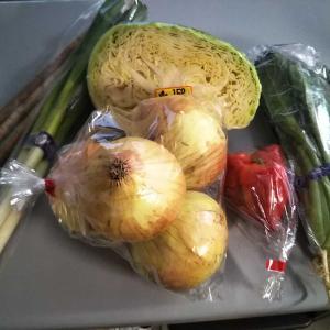 野菜の買い出しとロープライスの家着を購入